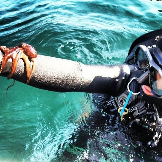 SB Channelkeeper Eelgrass Restoration